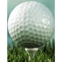 GLMV 2020 Annual Golf Outing - Your Ultimate Day of Golf!