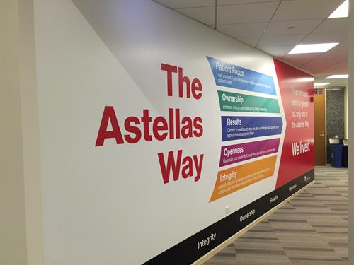 Gallery Image Astellas_Way_Sign.JPG