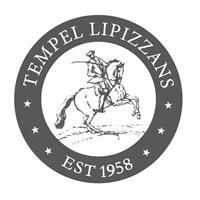 Tempel Lipizzans