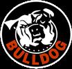 Bulldog Security Systems, Inc.