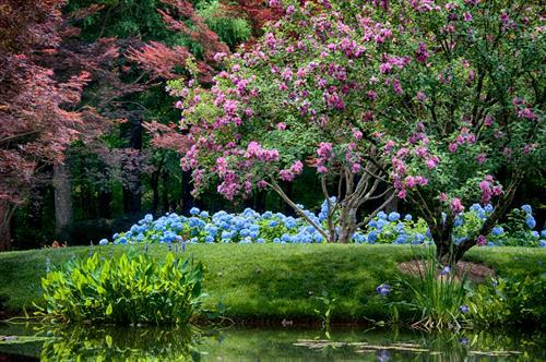 Gallery Image 8597082496_c5f6f6ac11_o.jpg_contrast.jpg