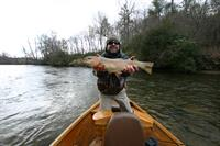 Upper Toccoa River Rainbow