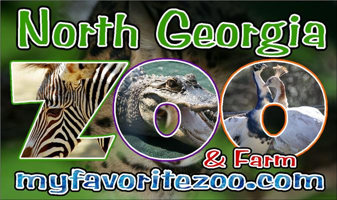 North Georgia Zoo and Petting Farm