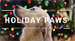 Holiday Paws – benefiting Shelter Pets