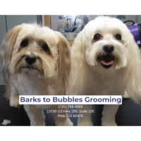 Barks to Bubbles Grooming - Pine