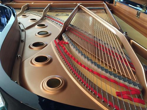 Yamaha Conservatory Grand