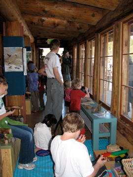 Exhibits at Evergreen Nature Center