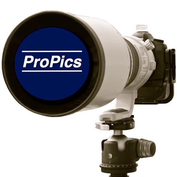 ProPics Photography & Video