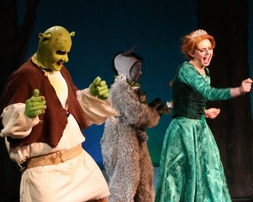 Gallery Image 5e6337c16f9734256388be05_Shrek_(1)-p-500.jpeg