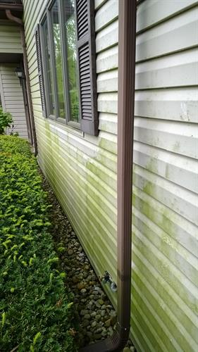 Before Cleaning Siding