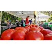 Teens Can Submit Designs For This Year's Lincoln Square Farmers Market Tote Bag