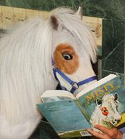 Horses In The Library