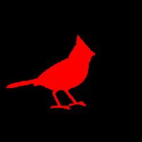 Basic Birder