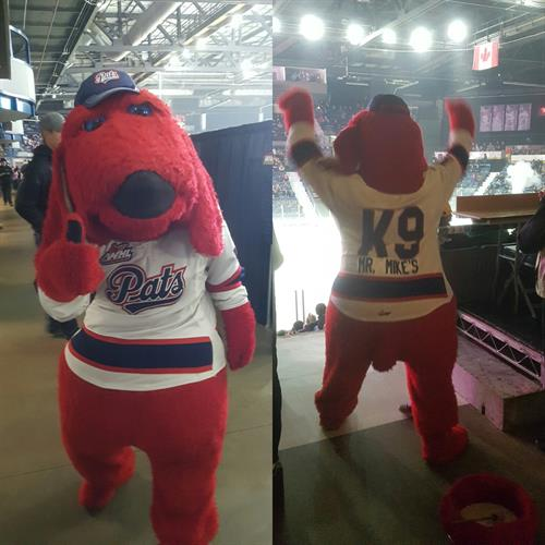 MR MIKES K9 mascot for the Regina Pats