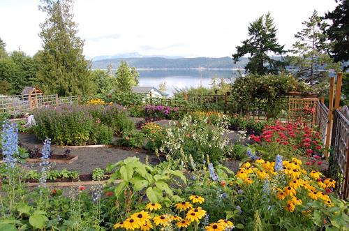 Harmony Hill's Gardens
