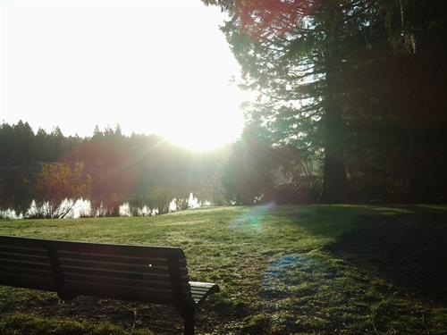 Crisp Autumn Morning at Lake Limerick Inn