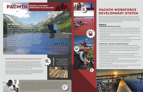 Executive summary report design for PacMountain Work Source