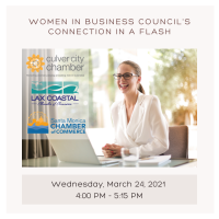 Women In Business Council's Connection in a Flash
