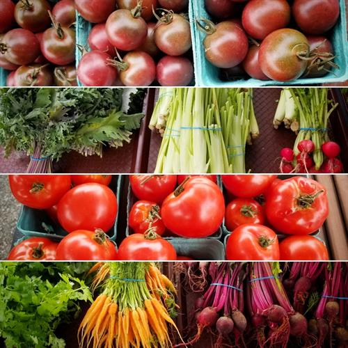 Gallery Image veggies_4.jpg