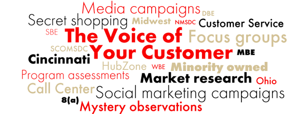 The Voice of Your Customer
