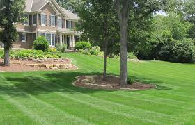 Gallery Image mowed_lawns_1.jpg