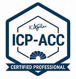 Our Experts are Professional Certified Agile Coaches
