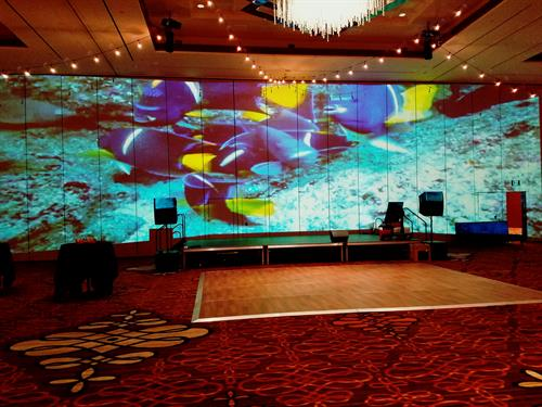 Gallery Image Ballroom_Video_Wall.jpg