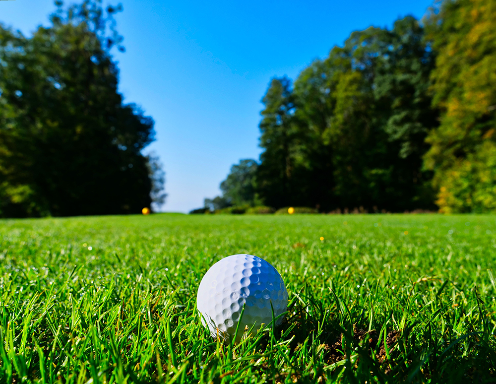 Golf Local: Support local courses and reduce stress