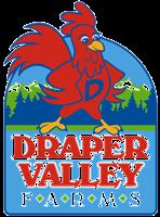 Gallery Image DV_Transparent_Logo.png