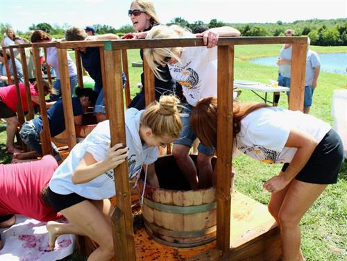 Annaul Grape Stomp-In the Barrel