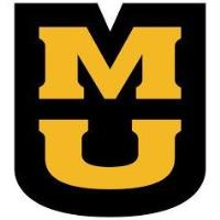 MU Extension to Provide Zoom Child Care Provider Training for Clock Hours