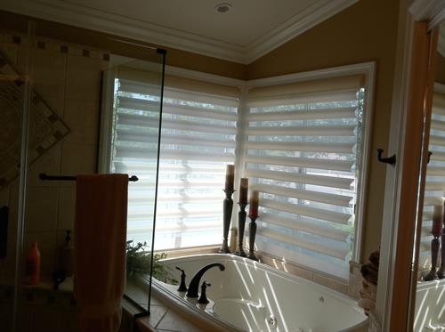 Hunter Douglas , Pirouette Window Shading, great product for a beautiful light filtering view.