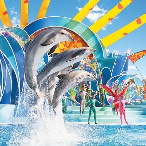 SeaWorld Tour Provider
