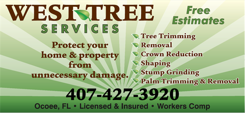 Call us any time so that we can give you a free estimate for your tree services needs!