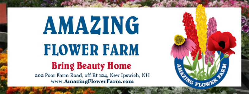Amazing Flower Farm