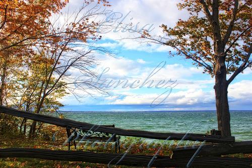 # 256 - Lake Simcoe - Georgina