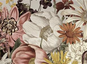 Bloom Aesthetic Studio
