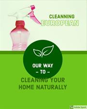 Cleaning European