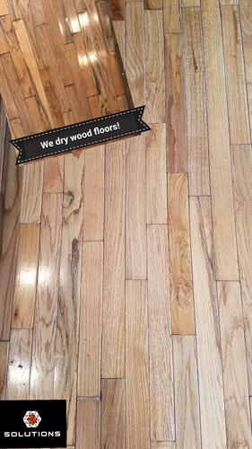 Restoring and drying wood floors.