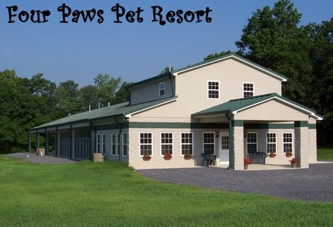 Four Paws Pet Hotel And Resort