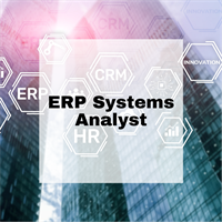 ERP Systems Analyst
