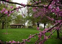 Spring Rock Park Upper Pavilion area