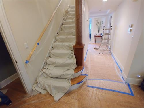 interior painters downers grove