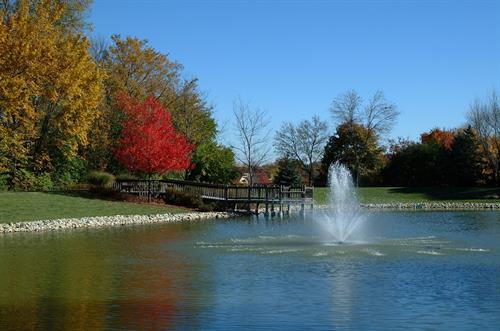 Gallery Image Pond_picture.jpg