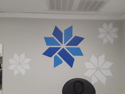 Ovosk Med Spa Contour Cut Wall Graphics
