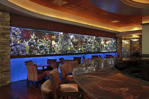 The spectacular 3,300-gallon saltwater aquarium in the Black&Blue Lounge at Valley View Casino & Hotel.
