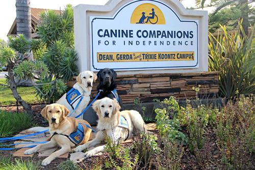 Canine Companions' Southwest Training Center
