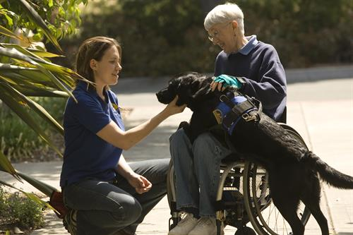 Client and trainer with assistance dog