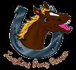 Laughing Pony Rescue - Non-Profit