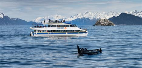 Major Marine Tours-Kenai Fjords